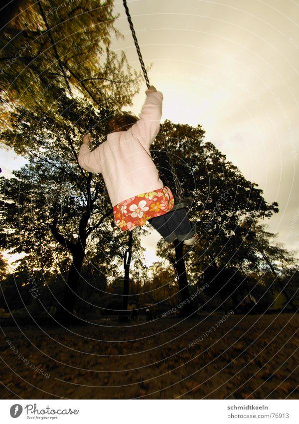 schaukeln Kind Spielen Spielplatz springen Wald Blatt Herbst Schaukel Alkoholisiert Freude Kette