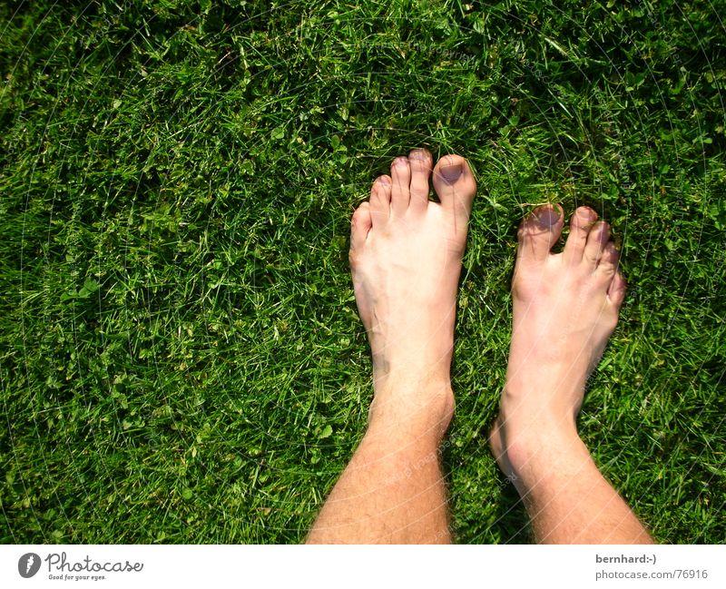 füße im grün Natur Sommer Wiese Gras Garten Fuß Rasen stehen Halm Zehen Körperteile