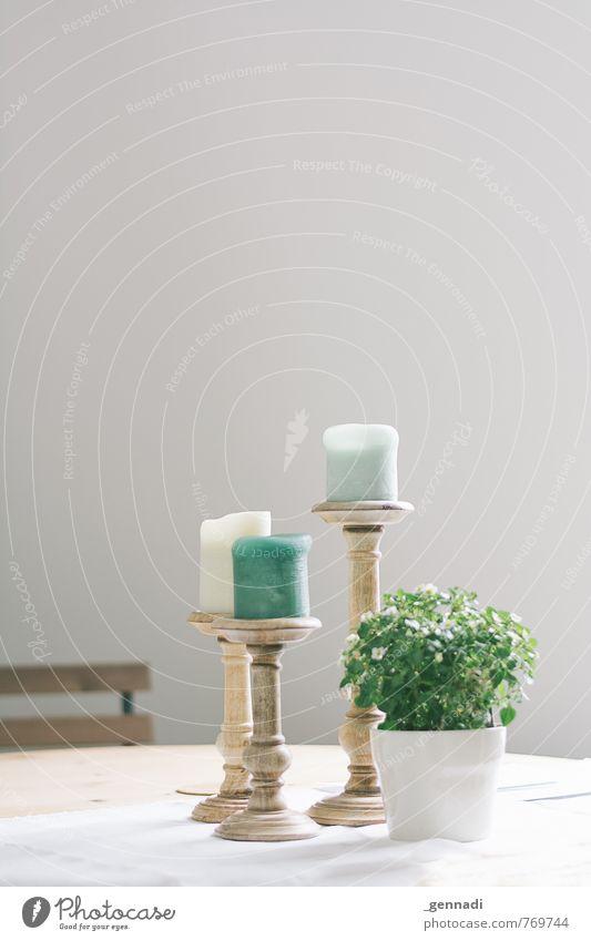 Zuhause ist es am schönsten Vase Tischwäsche Kerze Dekoration & Verzierung grün mint Esszimmer elegant verfaulen deutlich schick trendy Blume Farbfoto