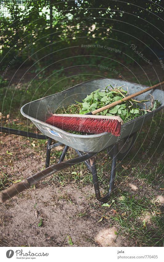 schubkarre Besen Schubkarre Natur Pflanze Blatt Grünpflanze Garten Arbeit & Erwerbstätigkeit Gartenarbeit Farbfoto Außenaufnahme Menschenleer Tag