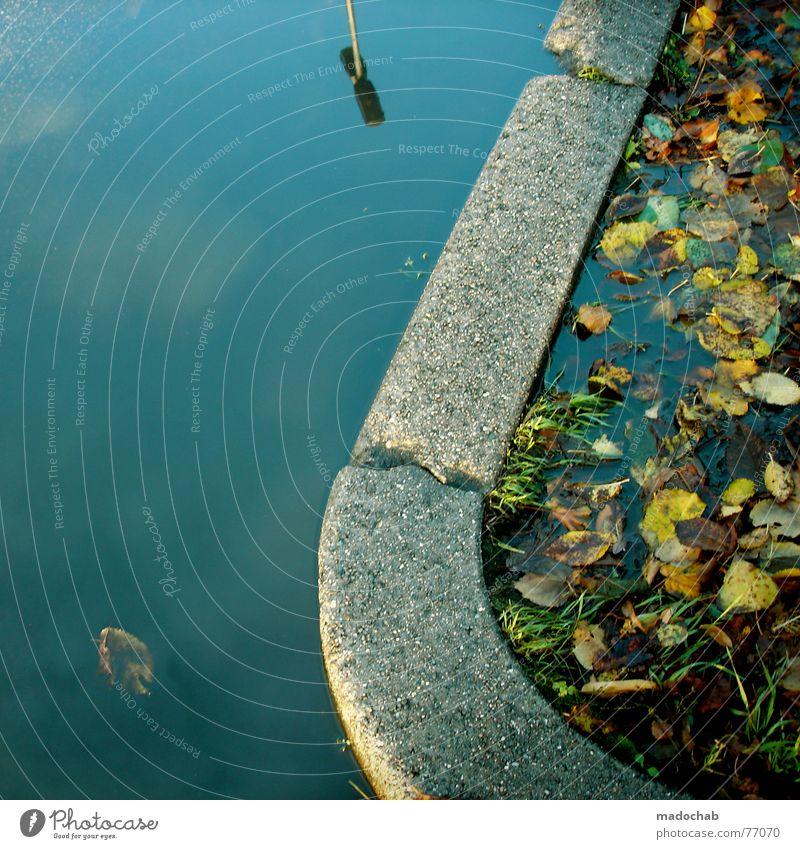 SKYDIVE | herbst autumn pfütze puddle fall romantik traum dream Wasser Himmel Stadt Blatt Lampe dunkel Herbst Gefühle träumen Luft Spaziergang Bodenbelag