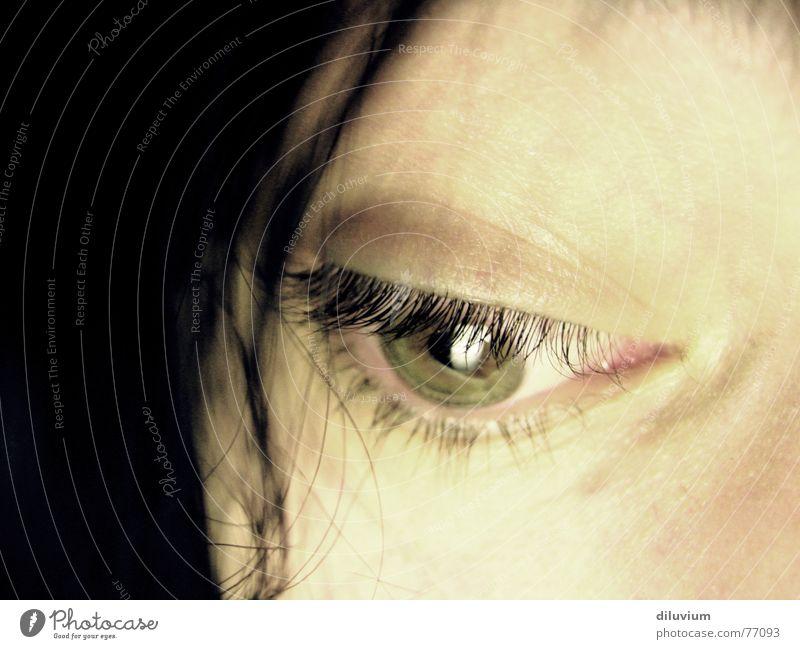 instrument grün Gesicht Auge Haare & Frisuren Haut Wimpern Bildausschnitt Anschnitt Pupille Regenbogenhaut Frauengesicht Frauenaugen Gesichtsausschnitt Augenfarbe Vor dunklem Hintergrund