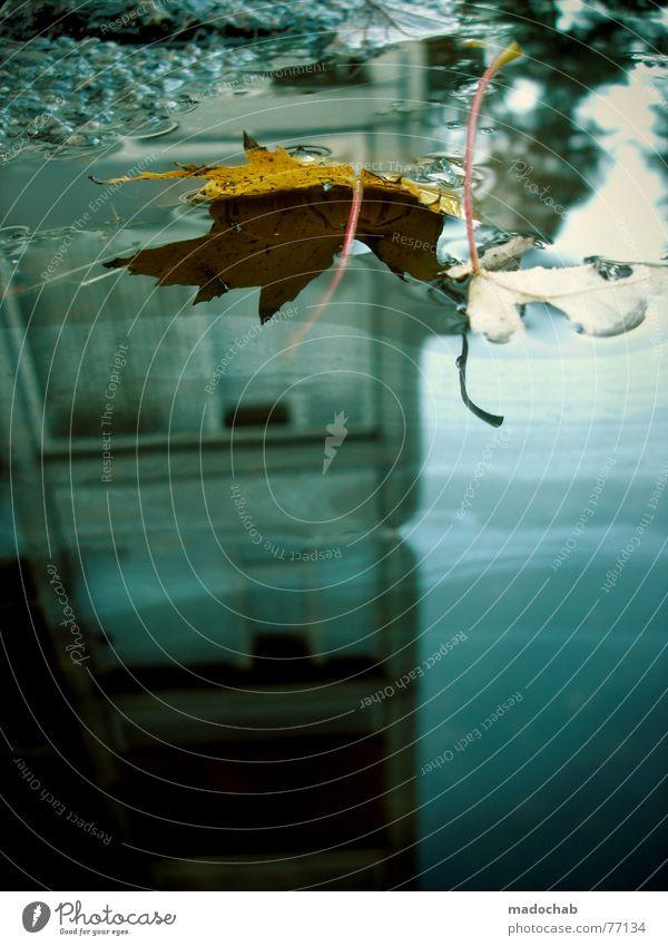 TIME GOES BY Pfütze wirklich Nebel nass Haus Hochhaus Gebäude Material Fenster live Block Beton Etage trist dunkel Leidenschaft Spiegel Vermieter Mieter Ghetto
