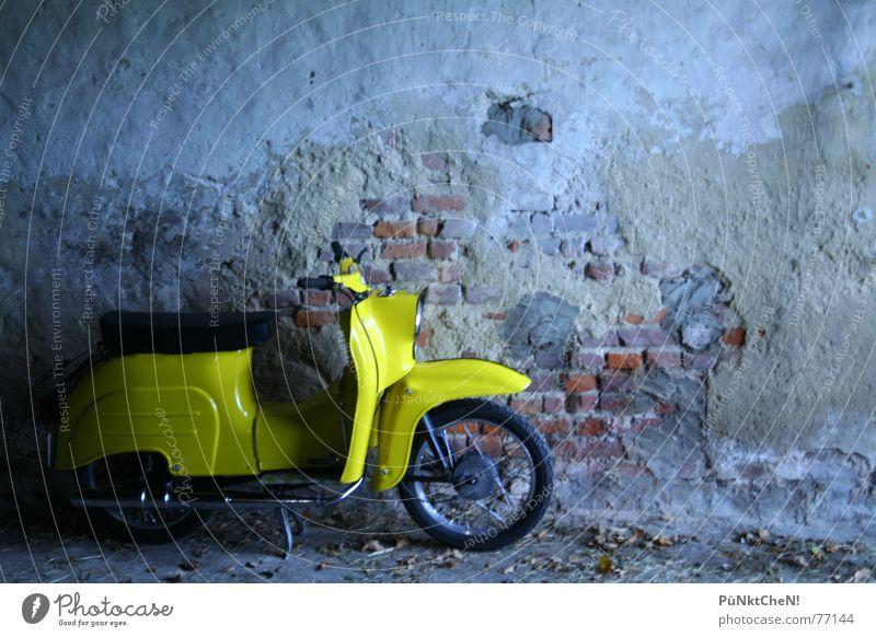 gelber vogel Schwalben Wand Auspuff fahren Verkehr Motor Kleinmotorrad alt Rad Sitzgelegenheit fahrtzeug