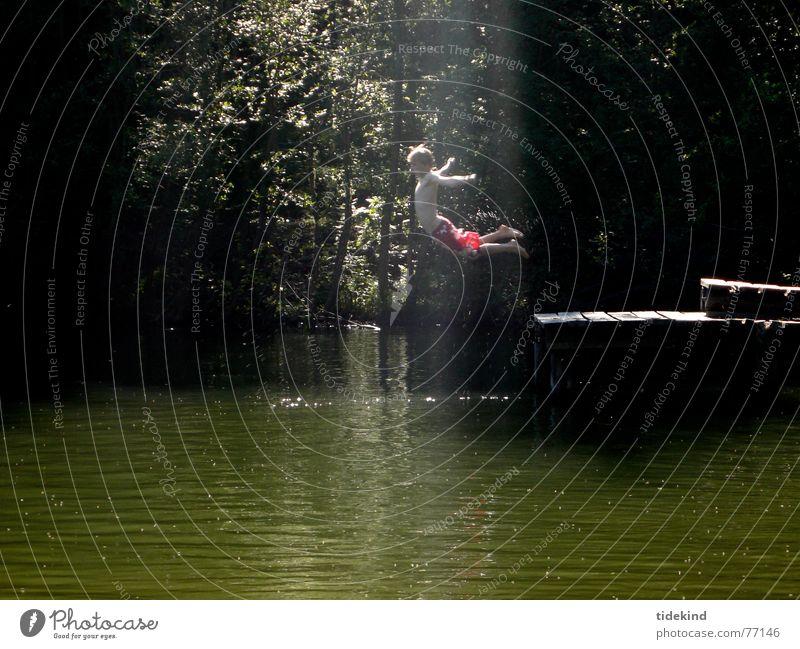 b-engel springen See Licht Sommer dunkel Steg Wasser fliegen Freude Schwimmen & Baden