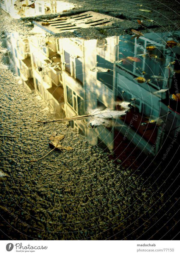 PLATTENBAUROMANTIK Pfütze wirklich Nebel nass Herbst Haus Hochhaus Gebäude Material Fenster live Block Beton Etage trist dunkel Leidenschaft Spiegel Vermieter