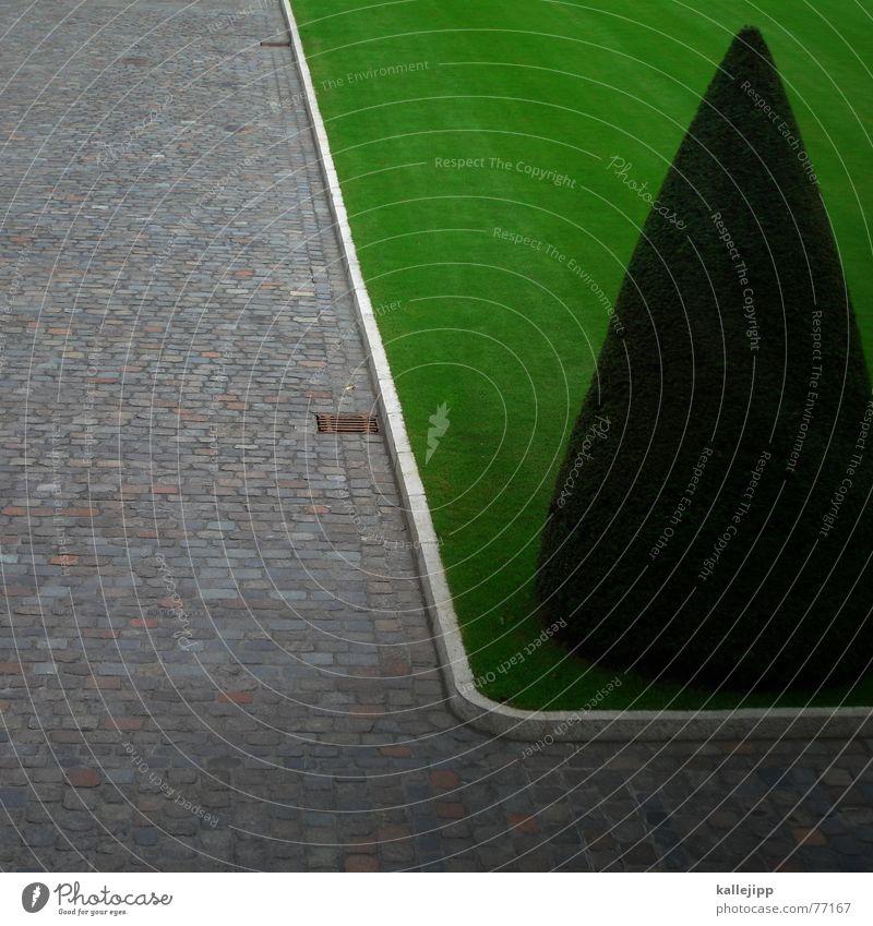 bellevue I grün Park Deutschland Sträucher Rasen Burg oder Schloss Hut Kopfsteinpflaster Photo-Shooting kegelförmig Präsident Bundespräsident Schloss Bellevue