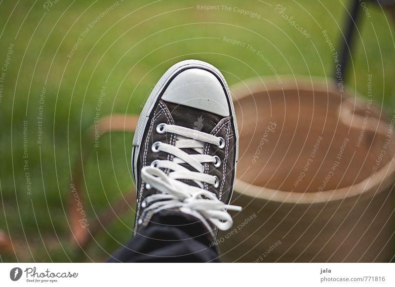 schuh Pflanze Gras Wiese Schuhe Turnschuh Chucks trendy Farbfoto Außenaufnahme Menschenleer Tag