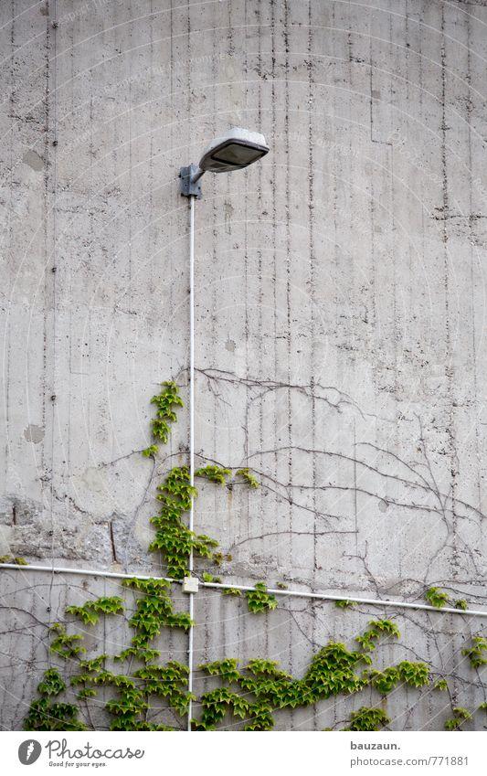 HH   +. Technik & Technologie Energiewirtschaft Erneuerbare Energie Pflanze Efeu Grünpflanze Stadt Fabrik Bunker Mauer Wand Fassade Lampe Beleuchtung Kabel