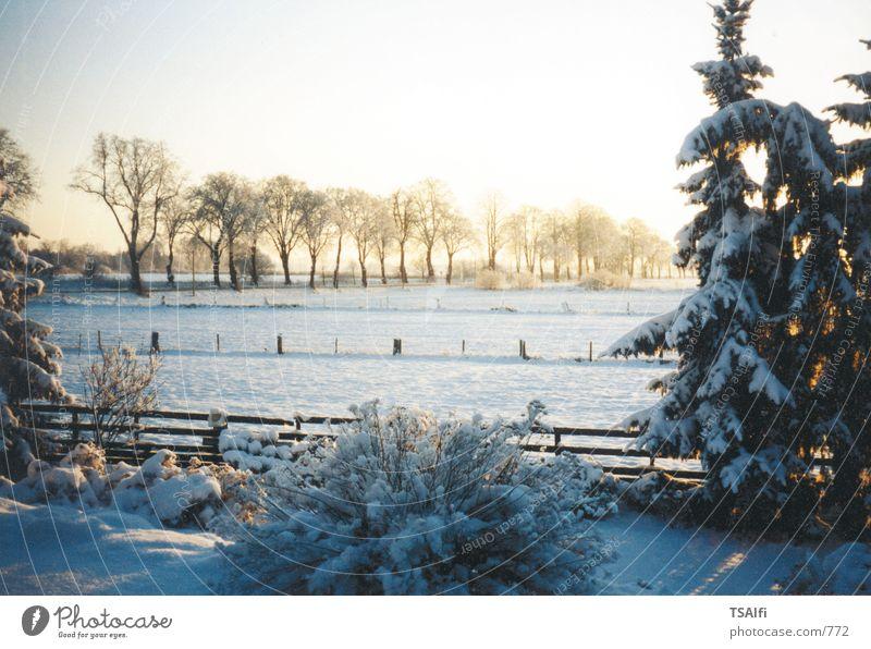 Sonnenuntergang im Winter Schnee