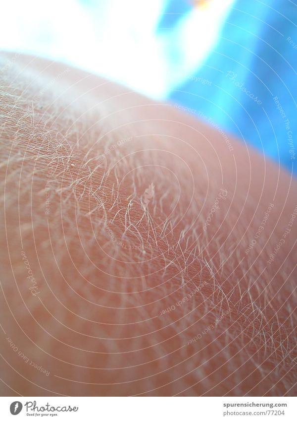 Salzhaut Ferien & Urlaub & Reisen Sonne Strand Spielen Haare & Frisuren Linie hell braun Körper blond Rücken Haut trocken bleich Glätte Salz