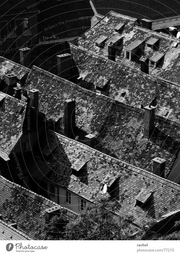 Dachwelten Sommer Architektur Zusammensein Stadtleben Wohnung Häusliches Leben Aussicht Ecke Dach Neigung malerisch Falte Rauch Gesellschaft (Soziologie) Altstadt Schornstein
