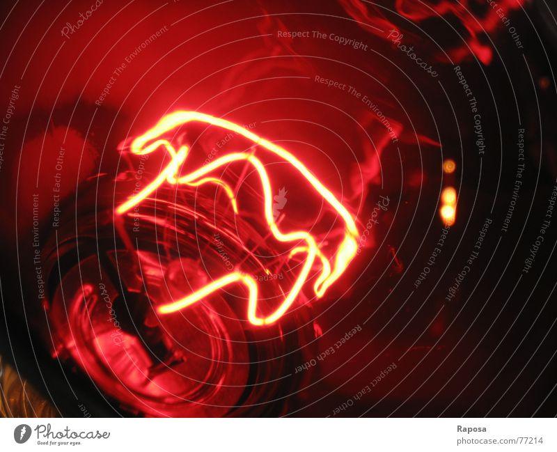 lightshow No.2 rot Lampe Wärme Elektrizität Kabel führen Draht Glühbirne elektrisch Elektrisches Gerät Rotlichtlampe