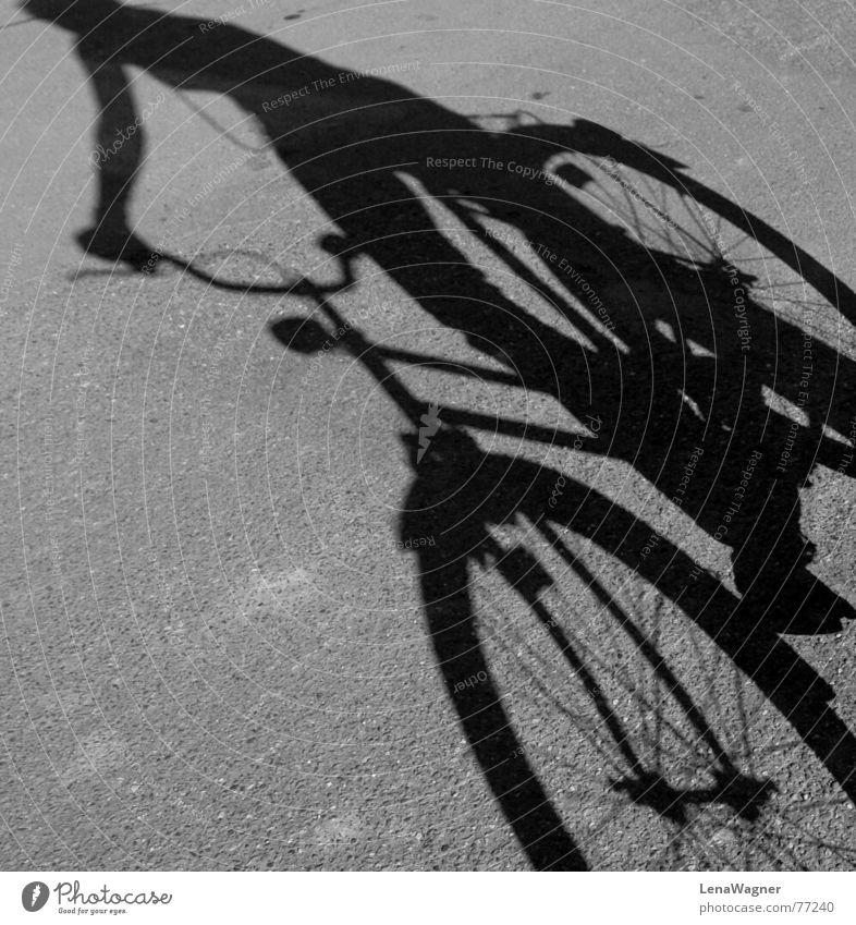 fahrradfahren schwarz Straße grau Fahrrad Rahmen Speichen Fahrer