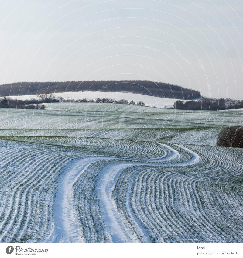 don't drink and drive Winter Schnee Umwelt Natur Landschaft Himmel Eis Frost Feld kalt Beginn anstrengen Spuren Linie Streifen Farbfoto Muster