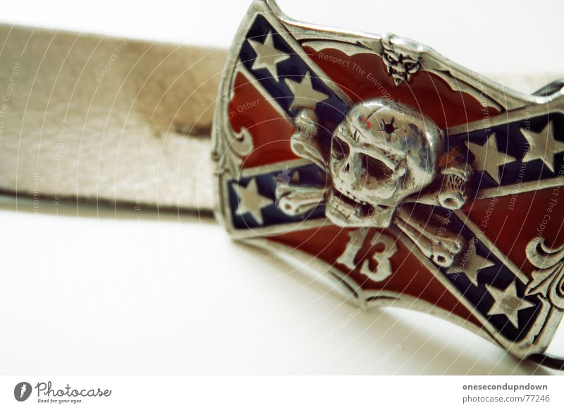 die wilde dreizehn (Part I) blau rot Tod Kunst glänzend 3 Wildtier Stern (Symbol) Bekleidung Kultur silber Ornament Skelett Qualität Gürtel Punkrock