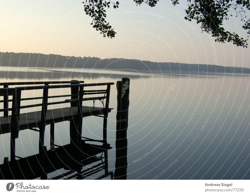 Morgens am See heimelig Steg kalt Romantik Reflexion & Spiegelung Baum Blatt Anlegestelle frisch Hölzerner See Silhouette Nebelschleier Schleier Gefühle