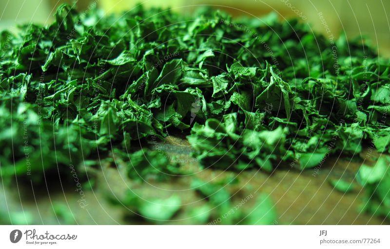 Petersilie grün Blatt Ernährung Kochen & Garen & Backen Küche Kräuter & Gewürze Haufen hacken Petersilie