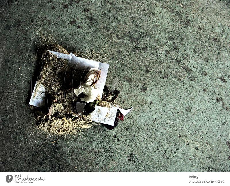37 mal kauen, dann schlucken - Kartoffeln machen nicht dick Ernährung Kunst dreckig Kultur Müll Reinigen Handwerk Aktion Werkstatt Staub Besen Schnipsel Sägemehl Blutfleck Räuchermehl