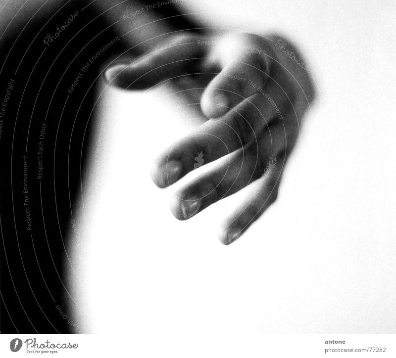 Hand feminin zart Zärtlichkeiten Frau Finger Körpersprache Balletttänzer deuten Suche finden berühren gestikulieren sensibel Innenaufnahme Unschärfe Anmut