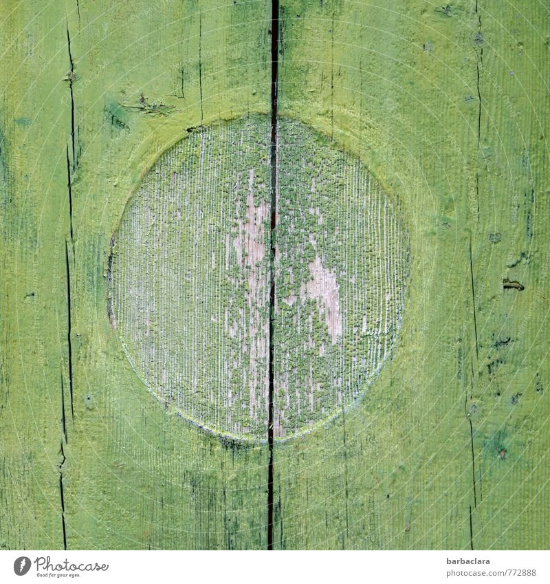 grüner Kreis im Quadrat Hütte Mauer Wand Tür Holz Zeichen Linie alt Schutz Farbe Hoffnung Symmetrie Zusammenhalt Farbfoto Außenaufnahme Detailaufnahme abstrakt