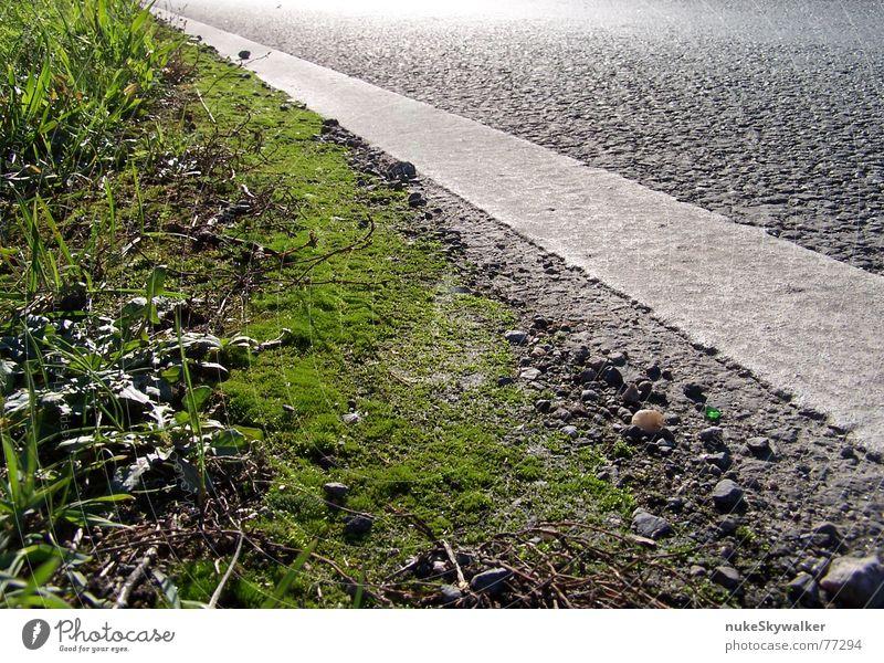 Bring mich ins Licht Wegrand Asphalt Scherbe diagonal schwarz grün Straßenrand Ecke Teer Gegenlicht Fahrbahnmarkierung grell Verkehrswege Makroaufnahme