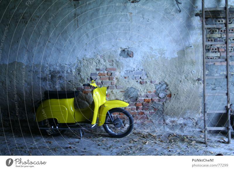 gelber vogel 2 alt Wand Rad Leiter Sitzgelegenheit Motor Kleinmotorrad Fahrradlenker Schwalben