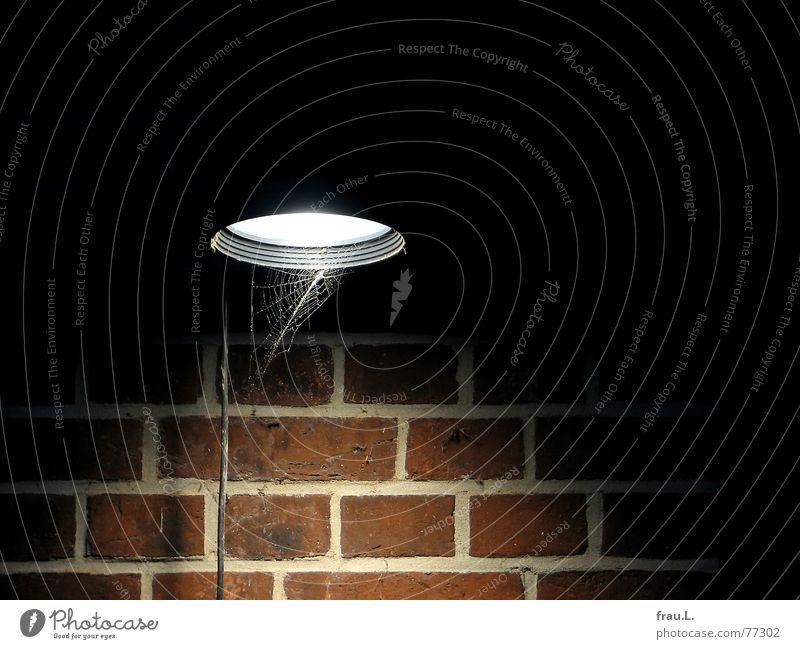 Lichtkegel Spinnennetz Kabel Lampe Wind Backstein Wand Nacht Elektrizität Windböe Mauer Industrie Dinge alte rinderschlachthalle außenwand rotklinker
