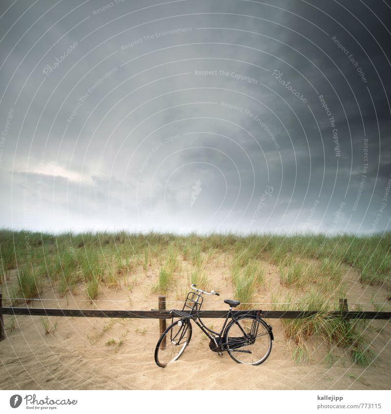 sand im getriebe Lifestyle elegant Stil Freizeit & Hobby Ferien & Urlaub & Reisen Tourismus Ausflug Ferne Freiheit Fahrradtour Sommerurlaub Sport Fitness