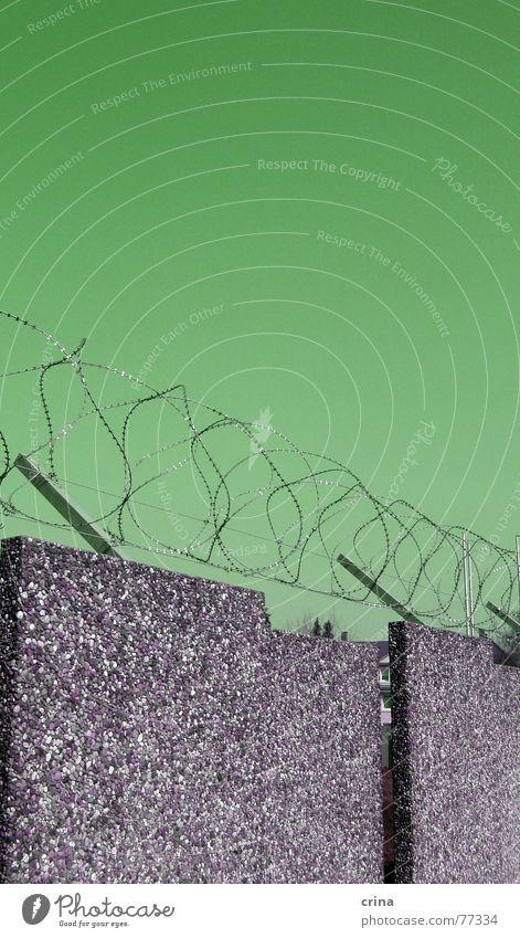 so´n Zaunhalt über ner Mauer Stacheldraht Grenze Beton Verbote grün hässlich versetzt seltsam Metall drübersteigen lustig Schmerz