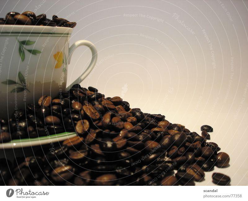 kaffee blau schön braun ästhetisch Kaffee Kochen & Garen & Backen Bar Café Tasse himmlisch Bohnen geschmackvoll Gemüse Kaffeetasse Lokal Kaffeebohnen gebraten