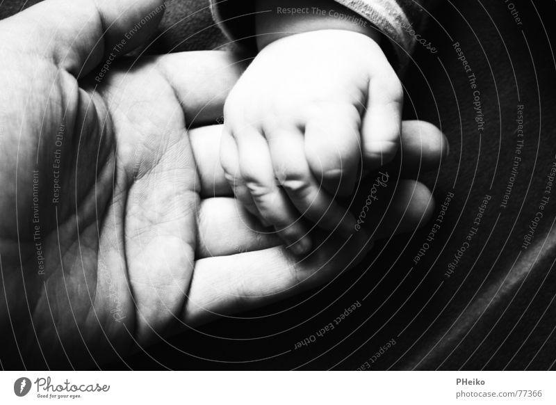 Hand in Hand Kind Mensch Baby Finger Hilfsbereitschaft Sicherheit Mutter Vater Geborgenheit Zärtlichkeiten Familie & Verwandtschaft Eltern