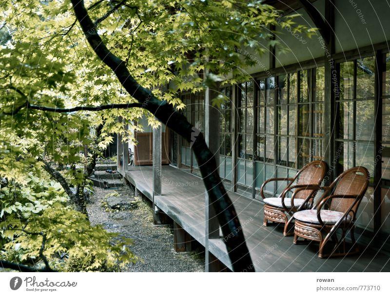 sitzplatz Baum Haus Bauwerk Gebäude Architektur Terrasse grün Stuhl Gartenstuhl Bambusstuhl Japanischer Ahorn Japanischer Garten Schiebetür Glasfassade