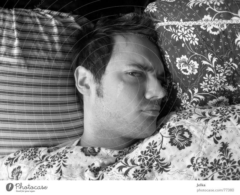 penner Mensch Mann Blume Gesicht Erwachsene Auge Haare & Frisuren Mund Nase Streifen Bett Bettwäsche Müdigkeit böse Gesichtsausdruck Decke