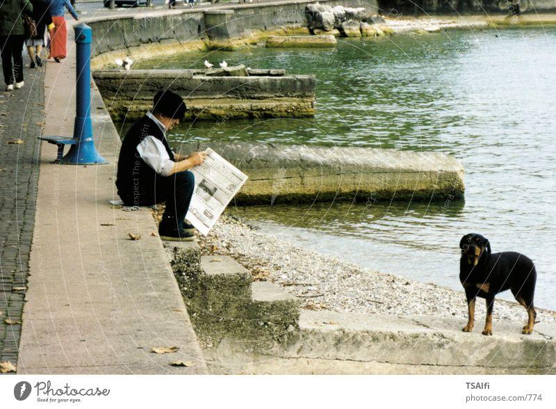 Alter man mit Zeitung Mann Hund Fototechnik