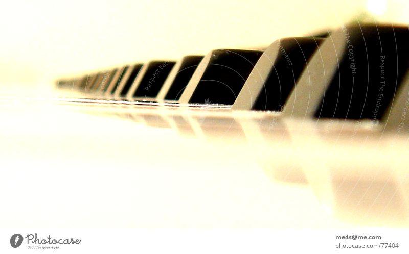 Klafünf Klavier Synthesizer Tasteninstrumente Klang Saite Mechanik Klaviatur Anschlag schwarz Reflexion & Spiegelung Rauschen Unschärfe Verlauf klein Horizont