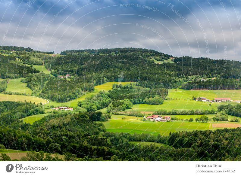 Hügelland / Pöllau Himmel Natur Ferien & Urlaub & Reisen Pflanze Sommer Sonne Baum Erholung Landschaft Wolken Ferne Umwelt Berge u. Gebirge Wiese Gras Freiheit