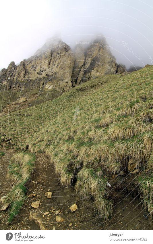 Gipfeltreffen Abenteuer Ferne Freiheit Berge u. Gebirge wandern Umwelt Natur Landschaft Pflanze Erde Wolken Nebel Wiese Hügel Felsen Alpen Wege & Pfade