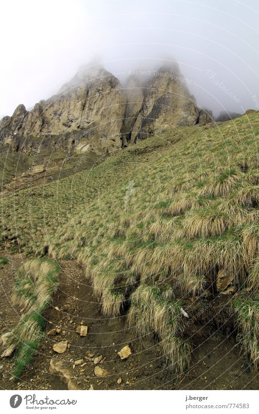 Gipfeltreffen Natur grün weiß Pflanze Landschaft Wolken Ferne Umwelt Berge u. Gebirge Wiese Wege & Pfade grau Freiheit braun Felsen Erde