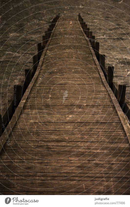 Ein letzter Blick ... See Anlegestelle Steg Holz trist kalt Mitte Kratzer Folie verfallen Pfosten Wasser Wege & Pfade