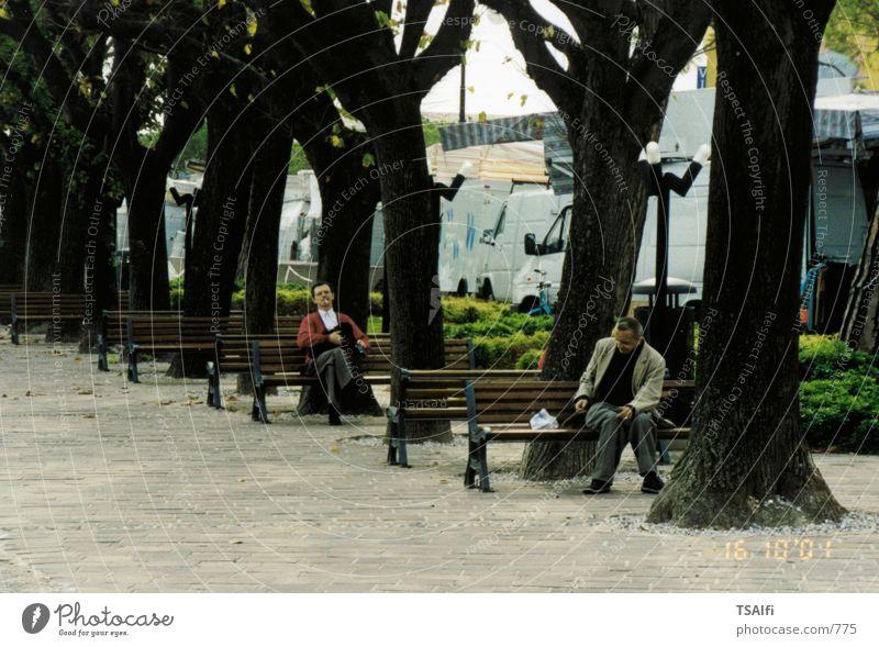 Parkbänke Parkbank Baum Mensch