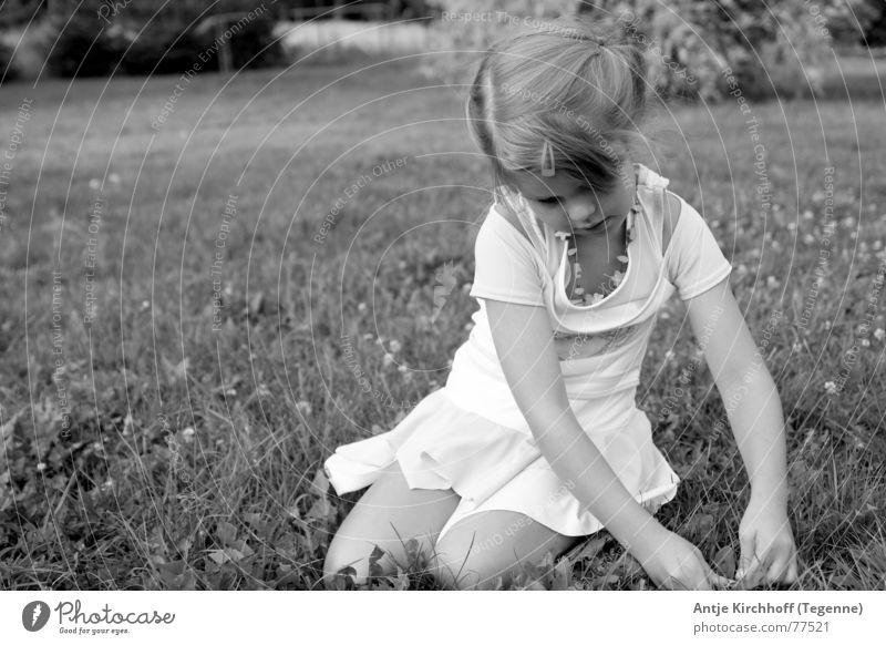 Little Fairy Mädchen Freundlichkeit süß zierlich Kindergarten verträumt Spielen offen Porträt Wiese Außenaufnahme Zopf Kleid Sommer Frühling süsse maus