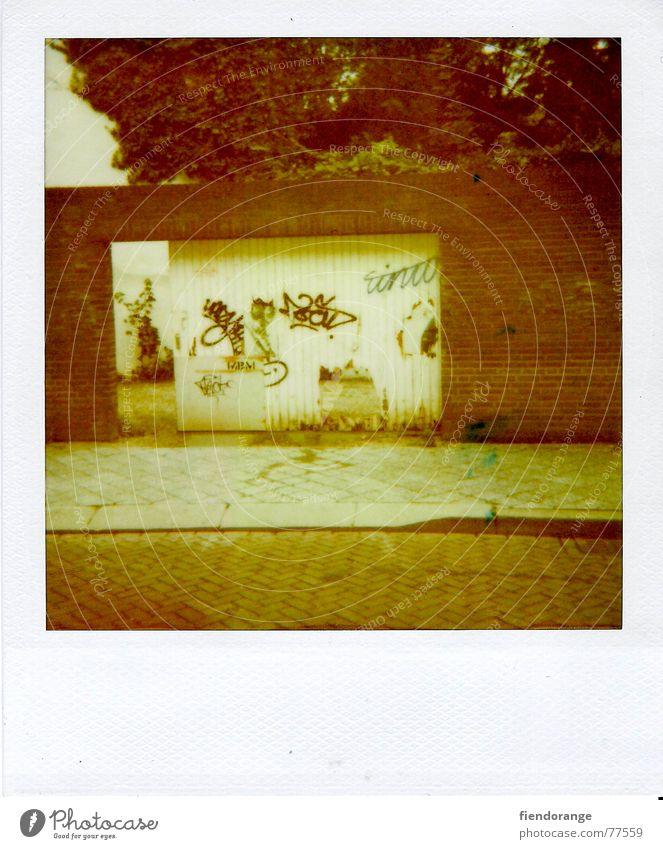 tortur Straße Wand Holz Mauer Tor Bürgersteig Loch