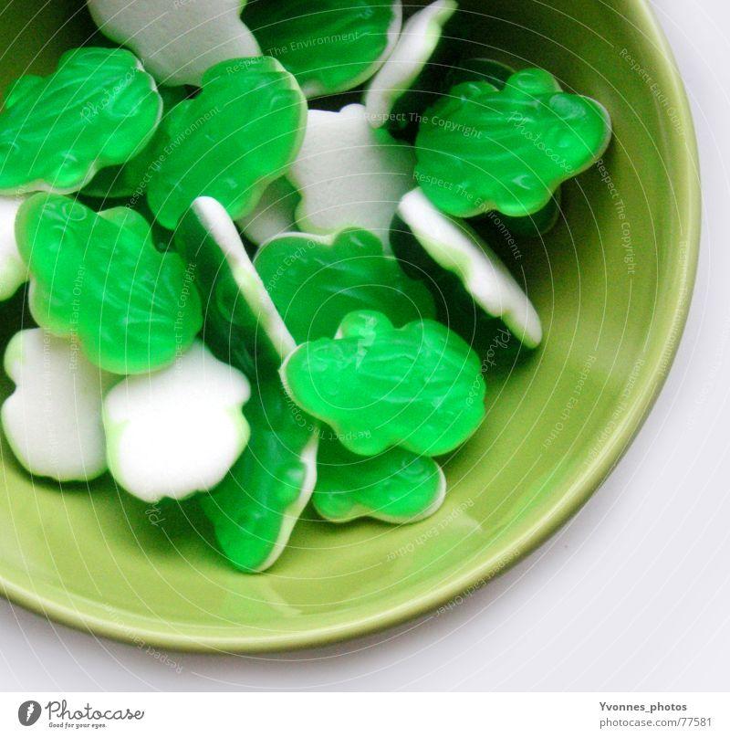 Sei kein Frosch! grün Farbe Lebensmittel Ernährung süß gut Küche Süßwaren lecker Quadrat Wohnzimmer Schalen & Schüsseln Weingummi Zucker Zahnarzt
