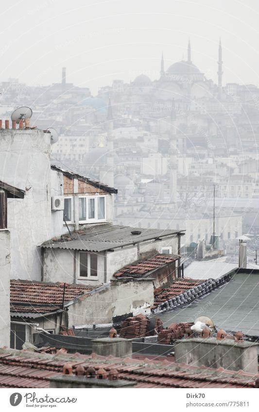Zwei Seiten des Goldenen Horns alt Stadt weiß rot Haus schwarz Wand Frühling Mauer grau Häusliches Leben Nebel Tourismus Turm Dach historisch