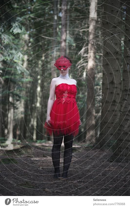 rot Mensch Frau Natur Pflanze Sommer Baum Wald Erwachsene feminin Frühling Mode stehen Tanzen Bekleidung fantastisch