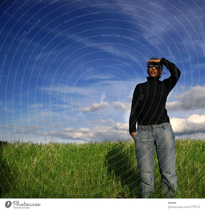 Fernweh schön Ferne Freiheit Junge Frau Jugendliche Erwachsene Landschaft Himmel Wolken Schönes Wetter Gras Wiese Jeanshose Pullover Sonnenbrille dunkel hoch