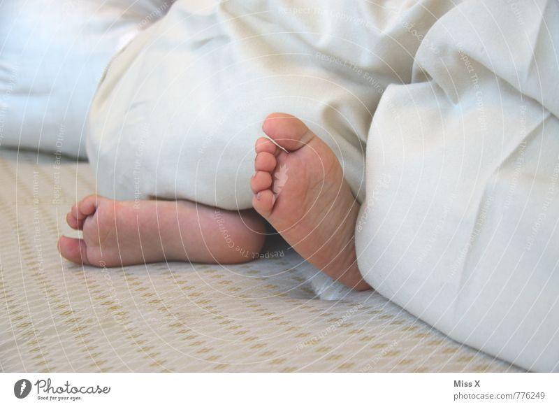 Füße Mensch Kind Leben Gefühle klein Fuß Stimmung Kindheit Baby niedlich Warmherzigkeit schlafen Bett Müdigkeit Kleinkind Geborgenheit