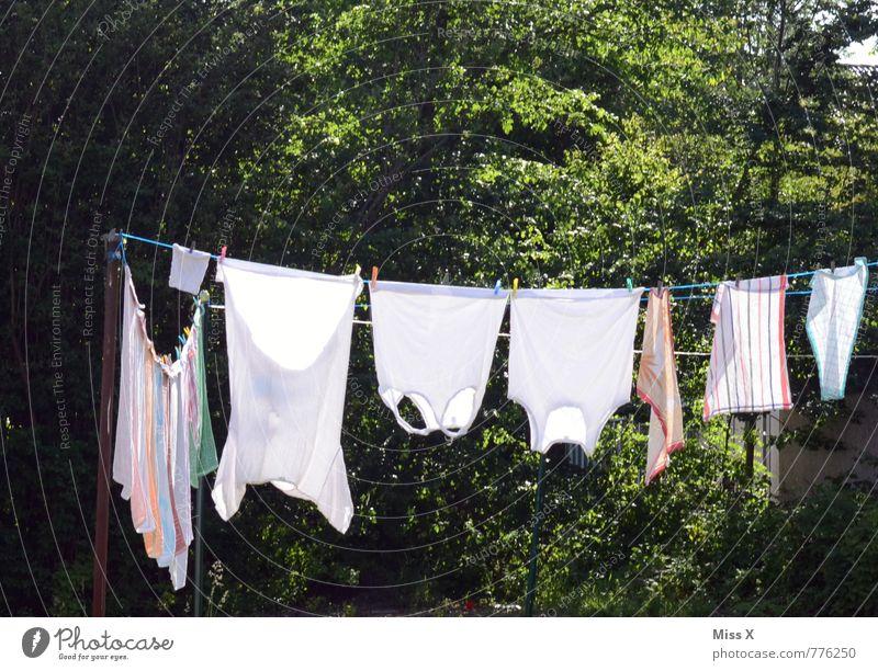Reine Reihe Häusliches Leben Garten Sonne Sonnenlicht Sommer Bekleidung T-Shirt Unterwäsche Stoff nass Sauberkeit trocken weiß Reinlichkeit Reinheit Wäscheleine