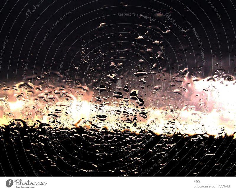 Novembertag #1 weiß ruhig schwarz Herbst Fenster Regen Zufriedenheit rosa Glas gold nass Wassertropfen ästhetisch violett fantastisch Wohlgefühl